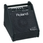 Roland Personal Monitor Amplifier #PM10